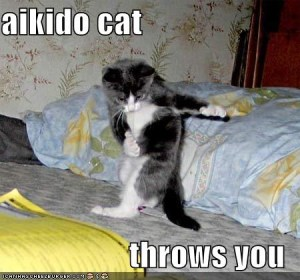 Aikido cat - by Mike Benton